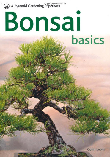 Bonsai Basics -